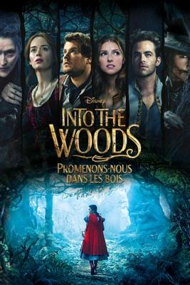 Télécharger Into The Woods: Promenons-nous Dans Les Bois ou voir en streaming