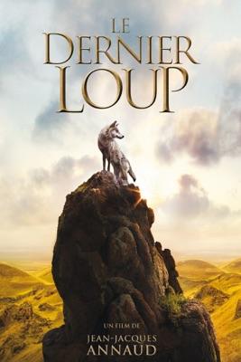 DVD Le Dernier Loup
