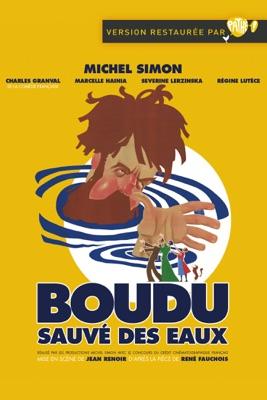 DVD Boudu Sauvé Des Eaux