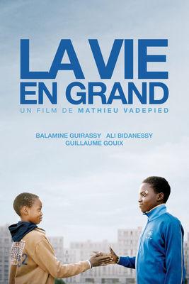 Jaquette dvd La Vie En Grand