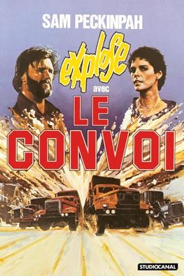 Télécharger Le Convoi (1978)