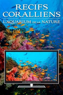 Télécharger Récifs Coralliens : L'aquarium De La Nature