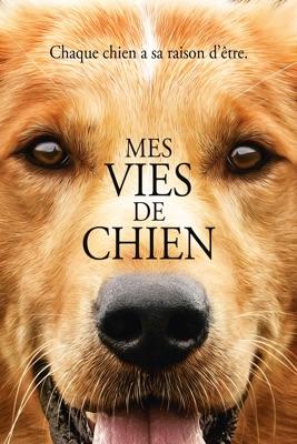 Mes Vies De Chien en streaming ou téléchargement