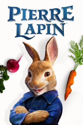 Jaquette dvd Pierre Lapin