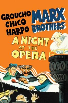 DVD Une Nuit À L'opéra