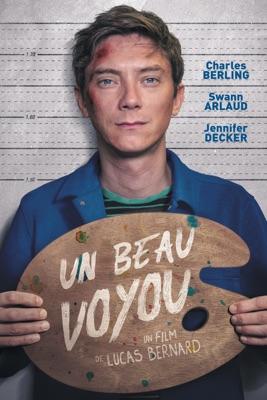 Jaquette dvd Un Beau Voyou