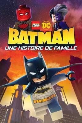 DVD LEGO DC Batman : Une Histoire De Famille