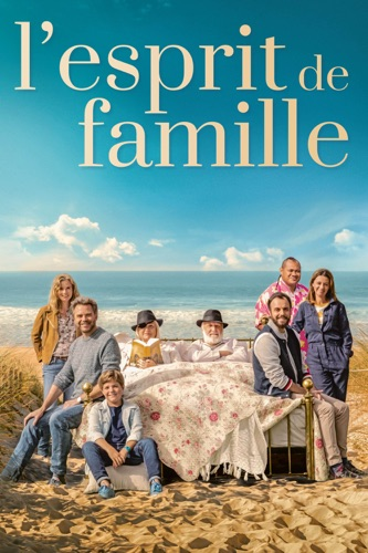 DVD L'esprit De Famille