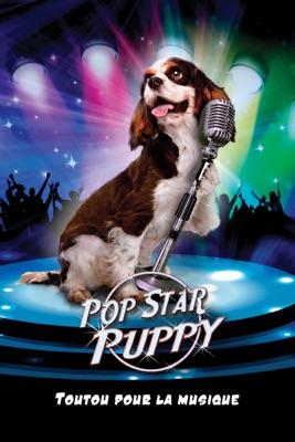 Pop Star Puppy Toutou Pour La Musique en streaming ou téléchargement