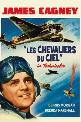 DVD Les chevaliers du ciel