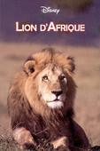 télécharger Lion d'Afrique
