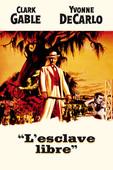 L'esclave libre en streaming ou téléchargement