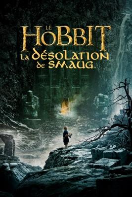 Télécharger Le Hobbit : La Désolation De Smaug ou voir en streaming