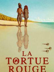 DVD La Tortue Rouge