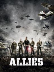 DVD Allies