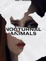 DVD Nocturnal Animals