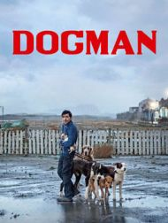 DVD Dogman