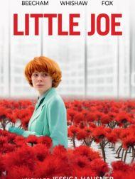 DVD Little Joe