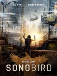 DVD Songbird