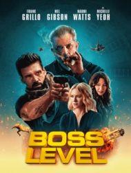 DVD Boss Level