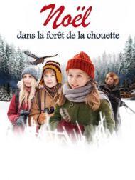 DVD Noël Dans La Forêt De La Chouette