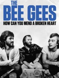 DVD The Bee Gees : How Can You Mend A Broken Heart