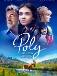 DVD Poly (2020)
