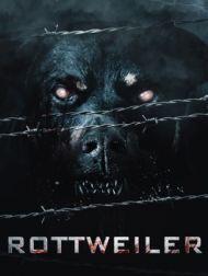 DVD Rottweiler (2004)