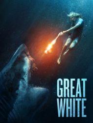 DVD Great White
