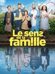 DVD Le Sens De La Famille
