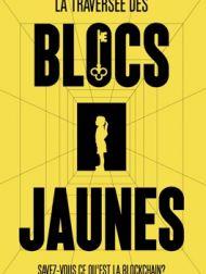 DVD La Traversée Des Blocs Jaunes