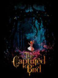 DVD The Captured Bird