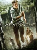 Télécharger Le Labyrinthe