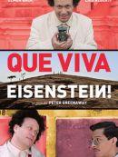 Télécharger Que Viva Eisenstein !