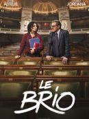 Télécharger Le Brio