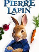 Télécharger Pierre Lapin