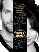 Télécharger Silver Linings Playbook