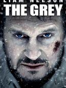 Télécharger The Grey