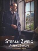Télécharger Stefan Zweig : Adieu L'Europe