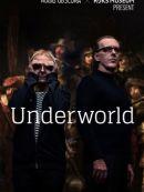 Télécharger Audio Obscura X Rijksmuseum Present Underworld