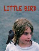 Télécharger Little Bird