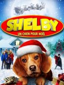 Télécharger Shelby Un Chien Pour Noël