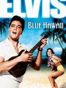 Télécharger Sous Le Ciel Bleu D'Hawaii