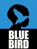 Télécharger Blue Bird