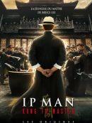 Télécharger Ip Man: Kung Fu Master