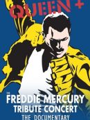 Télécharger Queen - The Freddie Mercury Tribute Concert 10th Anniversary Documentary