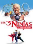 Télécharger Les 3 Ninjas Se Dechainent