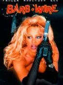 Télécharger Barb Wire (1996)