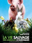 Télécharger La Vie Sauvage Des Animaux Domestiques