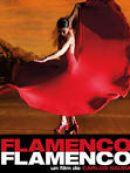 Télécharger Flamenco Flamenco